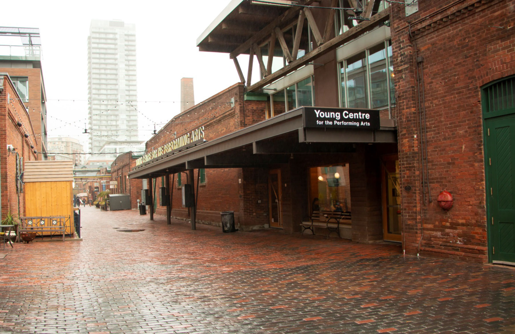 young centre theatre