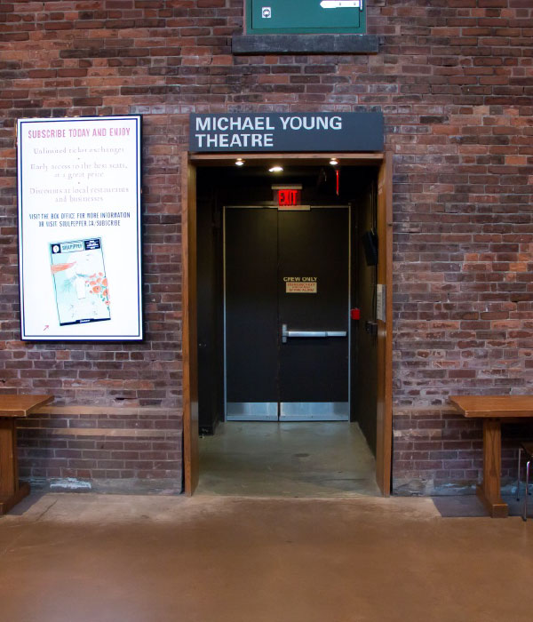michael young theatre